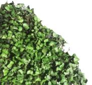 Микрогрин капусты Порция здоровья – ИМ «Обжора»