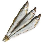 Риба Корюшка вялена ваг – ІМ «Обжора»