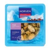 Мідіі Norven 170г в часниковом соусі термоформа – ІМ «Обжора»