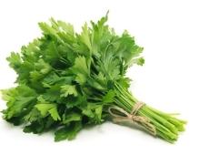 Зелень Петрушка 30 гр – ІМ «Обжора»