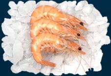 Заморожені креветки Ванамей 41/50 БЕЗ ГЛАЗУРІ – ІМ «Обжора»