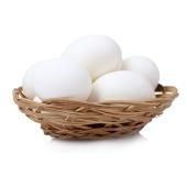 Куриное яйцо София – ИМ «Обжора»