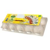 Куриное яйцо София фасованные (10 шт) – ИМ «Обжора»