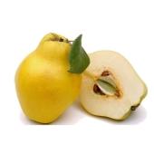 Айва вес – ИМ «Обжора»