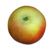 Яблоки вес – ИМ «Обжора»