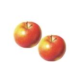 Яблоки ГАЛА вес. – ИМ «Обжора»