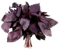 Базилик фиолетовый (пучок) 30 г – ИМ «Обжора»