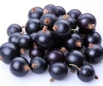 Смородина черная вес – ИМ «Обжора»