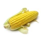 Кукуруза сахарная, шт. – ИМ «Обжора»