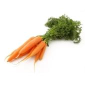 Морковь молодая пучок фас. – ИМ «Обжора»