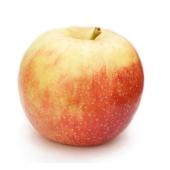 Яблоки Чемпион фас – ИМ «Обжора»