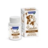 Фитокомплекс Природа для собак д/укрепления зубов и костей 100табл. – ИМ «Обжора»