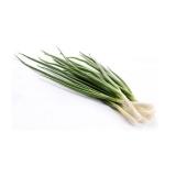 Лук зеленый (пучок) 100 г – ИМ «Обжора»