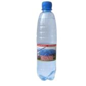 Вода Синевир Поляна Квасова 0,5 л – ИМ «Обжора»