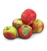 Яблоки ранние (Украина) – ИМ «Обжора»