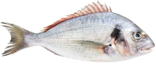 ^^ Рыба Дорадо 300-400 вес 2291606/-50 – ИМ «Обжора»