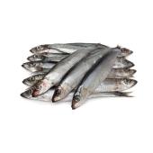R  Рыба Мойва дефростированная – ИМ «Обжора»