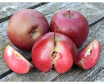 "Яблоки, сорт ""Байя Мариса"", вес. – ИМ «Обжора»"