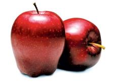 Яблоки Рихард вес. – ИМ «Обжора»