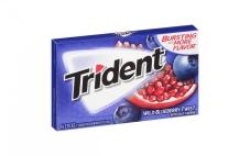 """Жвачка """"Тридент"""", 14 пластинок голубика-гранат, США – ИМ «Обжора»"""