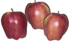 Яблоки Рихард фас. – ИМ «Обжора»