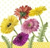 Салфетки TM Silken Разноцветные герберы 33*33 3 слоя 18 шт – ИМ «Обжора»