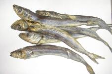 Риба Путасу ваг – ІМ «Обжора»