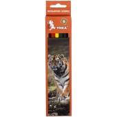 Карандаши цветные, 6 цветов `Тигр` – ИМ «Обжора»