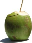 Кокос Gelado – ИМ «Обжора»