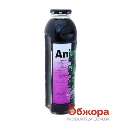 Сок Ани (Ani) Смородиновый 0,5л – ИМ «Обжора»
