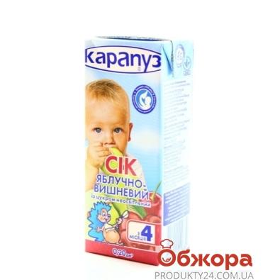 Сок Карапуз Яблоко-вишня 200 г – ИМ «Обжора»