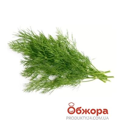 Укроп 30гр – ИМ «Обжора»