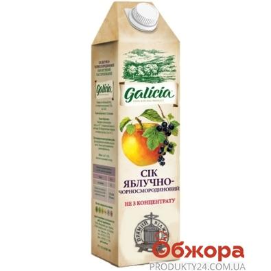 Сік Galicia 1,0л яблучно-черносмород. неосвітл. ТП – ІМ «Обжора»