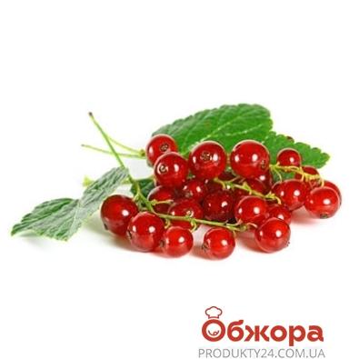 Смородина красная (упаковка) – ИМ «Обжора»
