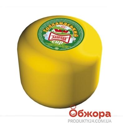 Сыр Голландский Злагода 45% весовой – ИМ «Обжора»
