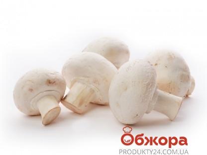 Гриби Василівський Агро продукт шампіньони ваг – ІМ «Обжора»