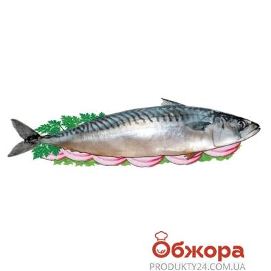 Рыба Скумбрия c/c c/г Волков – ИМ «Обжора»