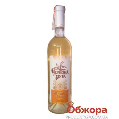 Вино Комрат (Comrat) Червона Рута Мускат белое п/сл 0,75 л – ИМ «Обжора»