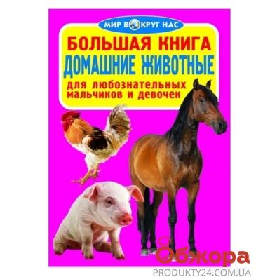 Большая книга. Домашние животные F00011967 – ИМ «Обжора»