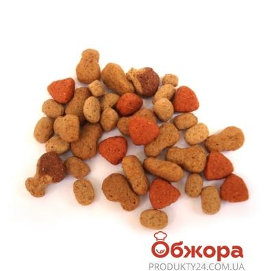 Корм Китикет (Kitekat) Курица – ИМ «Обжора»