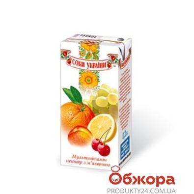 Сок Соки Украины Мультивитамин 0,2 л – ИМ «Обжора»