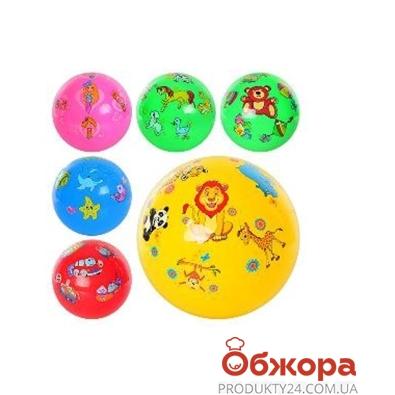 Мяч детский MS 0254 6 дюймів, 12 видів, ПВХ, кул. – ИМ «Обжора»