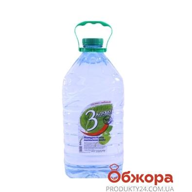 Вода 3 ключа б/газа 5 л – ИМ «Обжора»