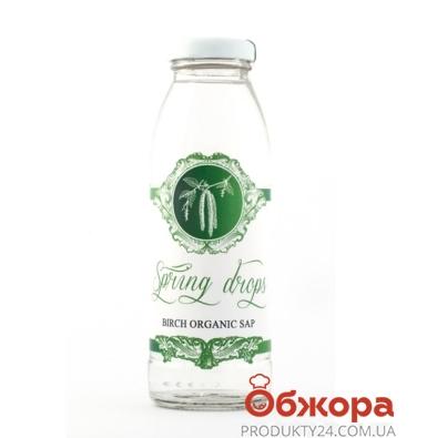 Сок Берёзовый с фруктозой Органик 0,3л – ИМ «Обжора»