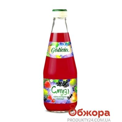 Сок Галичия (Galicia) Смузи ч.смородина-клубника 0,3л – ИМ «Обжора»