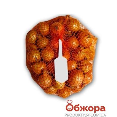 Лук Акция фас от 1,5 до 3 кг – ИМ «Обжора»