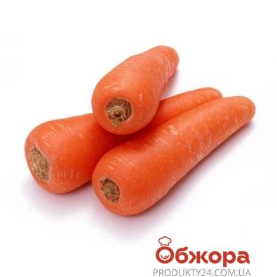 Морковь вес. – ИМ «Обжора»