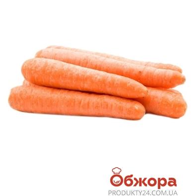 Морковь мытая вес. – ИМ «Обжора»