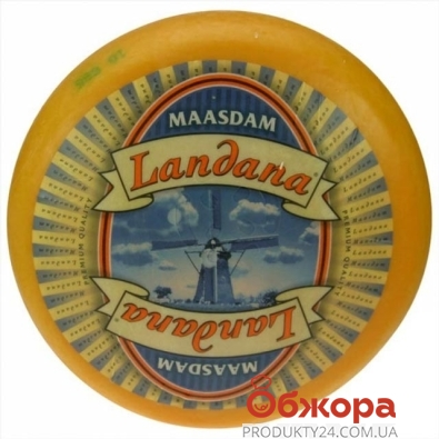 Сыр Ландана (Landana) Маасдам, 50% – ИМ «Обжора»