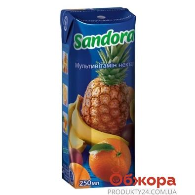 Сок Сандора (Sandora) мультивитамин 0,25 л – ИМ «Обжора»